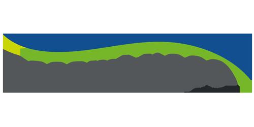 BASAMID 980