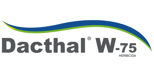 Dacthal W-75